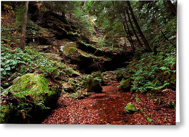 Greeting Card featuring the photograph Conkles Hollow Gorge by Haren Images- Kriss Haren