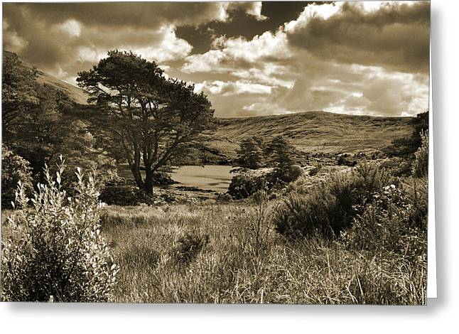 Connemara. Greeting Card by Terence Davis