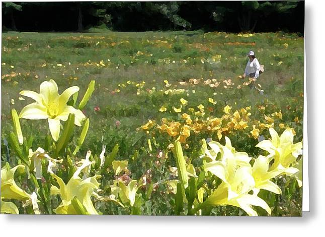 Consider The Lilies Of The Field Greeting Card by Jean Hall