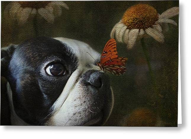 Constant Companion Greeting Card by Kathleen Holley