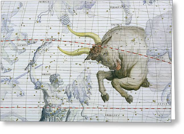 Constellation Of Taurus Greeting Card by Sir James Thornhill
