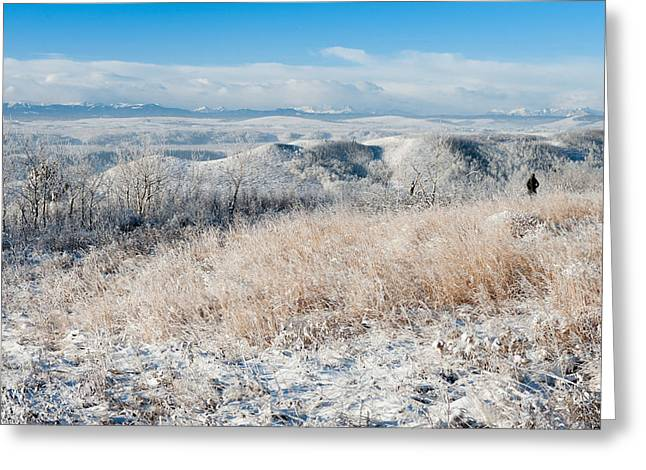 Contemplating Frosty Foothills  Greeting Card