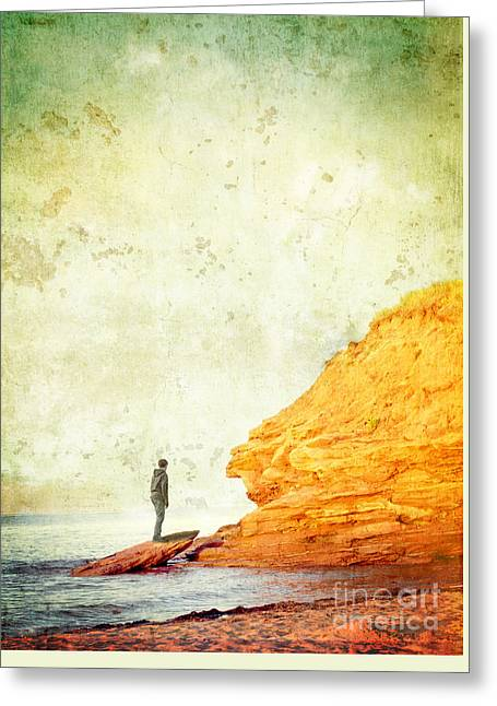 Contemplation Point Greeting Card by Edward Fielding