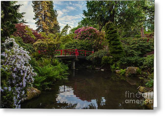 Contemplative Northwest Garden Greeting Card by Mike Reid