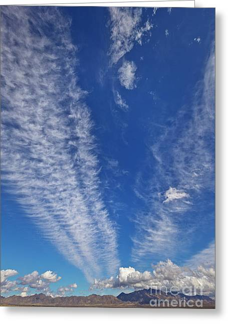 Contrails And Cumulus Cloud New Mexico Greeting Card by Yva Momatiuk John Eastcott