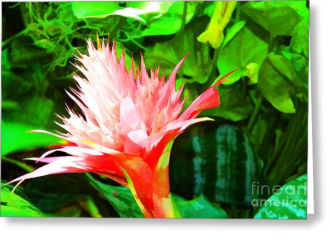 Spiked Pink Delight  Greeting Card by Luther Fine Art