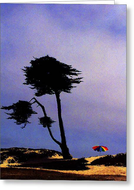 Contrasting Canopies Greeting Card by Ron Regalado