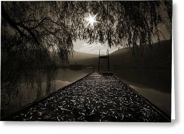Contre Jour Greeting Card by Graham Hawcroft pixsellpix