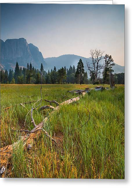 Cook's Meadow Greeting Card