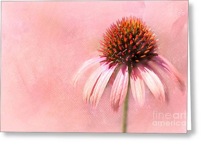 Cool And Pink Greeting Card by Sabrina L Ryan