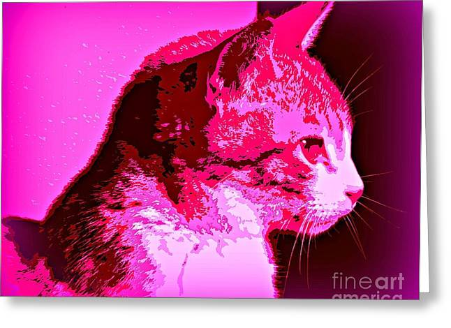Cool Cat Greeting Card by Clare Bevan