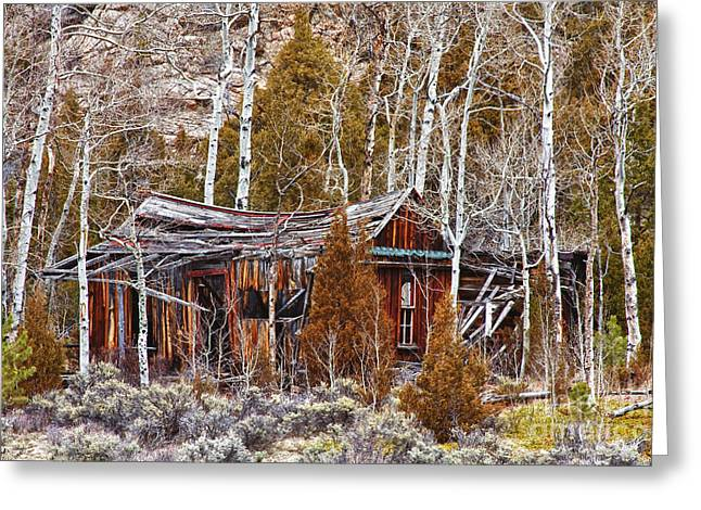Cool Colorado Rural Rustic Rundown Rocky Mountain Cabin  Greeting Card by James BO  Insogna