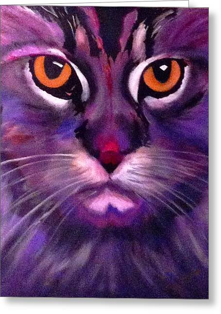 Cool Maine Coon Greeting Card