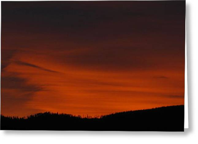 Cool Night Greeting Card by Greg Patzer