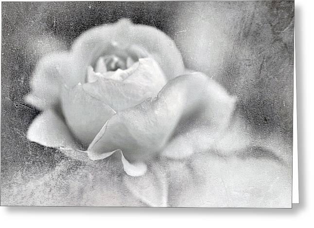 Cool Rose Greeting Card