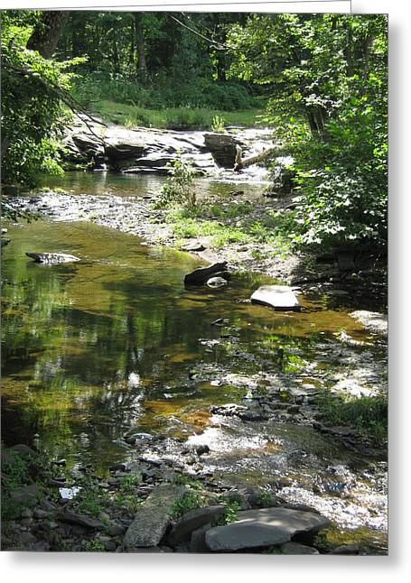 Greeting Card featuring the photograph Cool Waters by Ellen Levinson