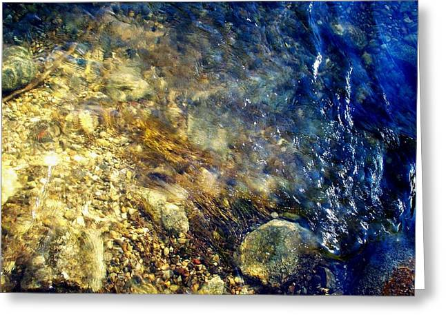 Greeting Card featuring the photograph Cool Waters...of The Rifle River by Daniel Thompson