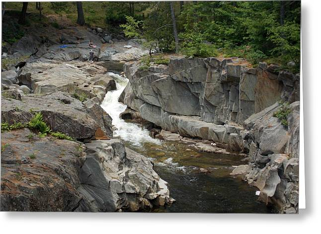 Coos Canyon In Maine Greeting Card by Catherine Gagne