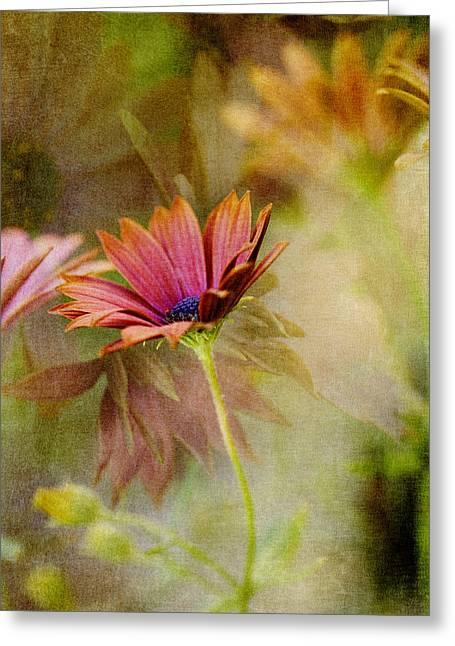 Copper Gerberas Greeting Card by Bonnie Bruno