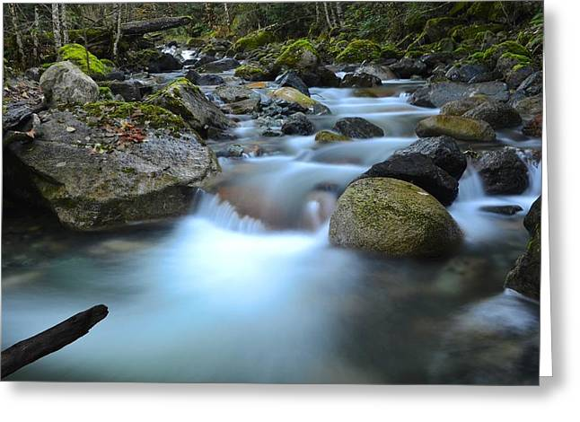 Coquihalla River 2 Greeting Card by Randy Giesbrecht