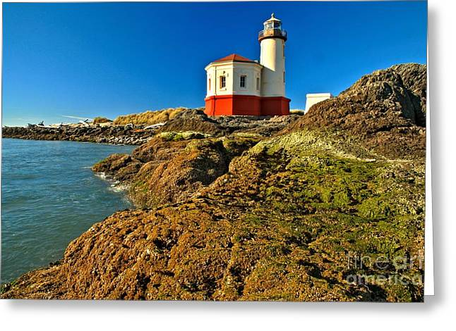 Coquille Lighthouse Greeting Card by Adam Jewell
