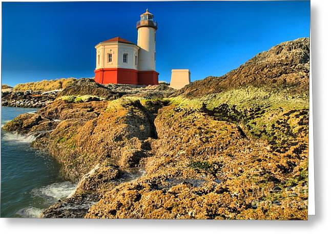 Coquille River Light Greeting Card by Adam Jewell