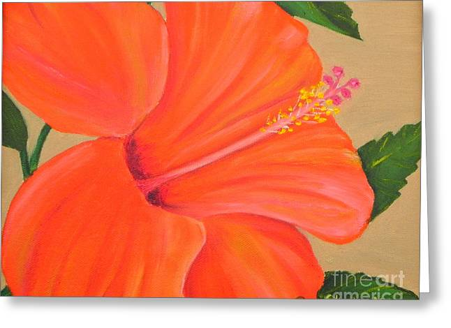 Coral Delight - Hibiscus Flower Greeting Card by Shelia Kempf