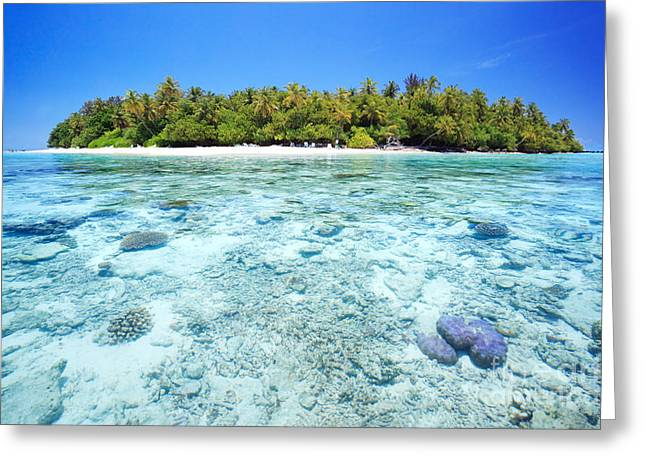 Coral Reef And Tropical Island In The Maldives Greeting Card by Matteo Colombo