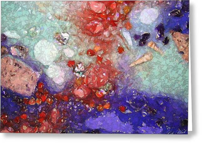 Coral Reef Greeting Card by Cole Black