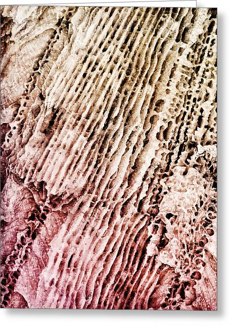 Coral Rock Close Up Greeting Card