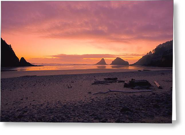 Coral Sunset At Heceta Head Greeting Card by Bonnie Bruno