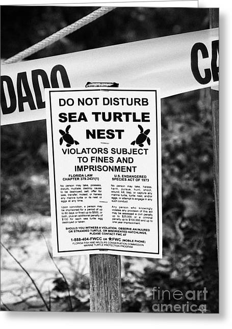 Cordoned Off Sea Turtle Nest With Warning Sign Dry Tortugas Florida Keys Us Greeting Card by Joe Fox