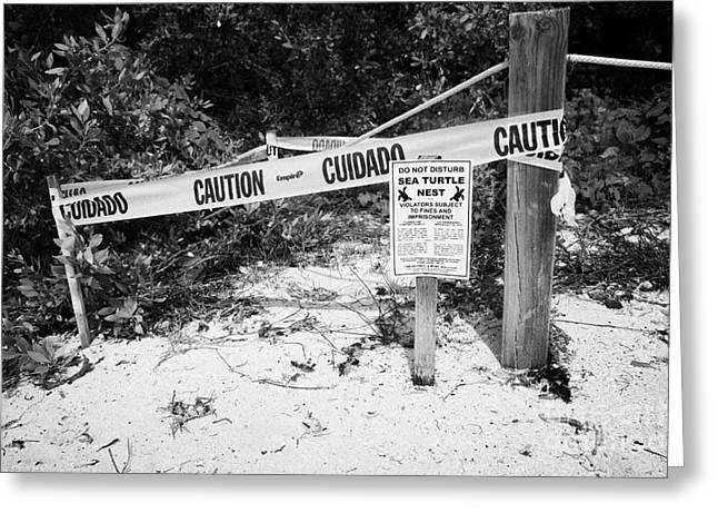 Cordoned Off Sea Turtle Nest With Warning Sign Dry Tortugas Florida Keys Usa Greeting Card by Joe Fox