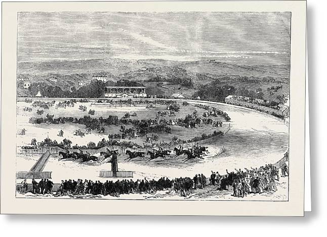 Cork Park Races The Grand National Steeplechase 1869 Greeting Card by English School