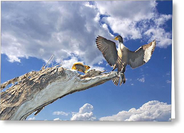 Cormorant Close Encounter With Tree Squirrel 1 Greeting Card by Roy Williams