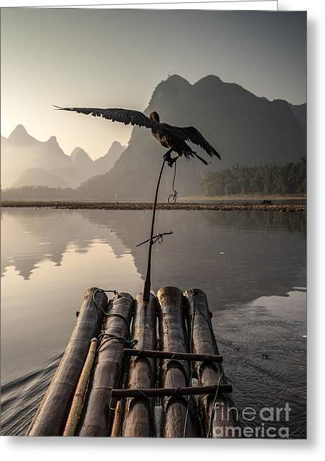 Cormorant Fishing On Li River Greeting Card by Matteo Colombo