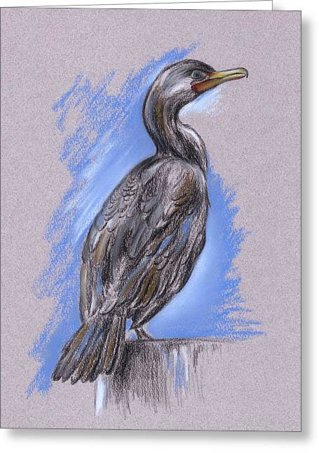 Cormorant Greeting Card by MM Anderson