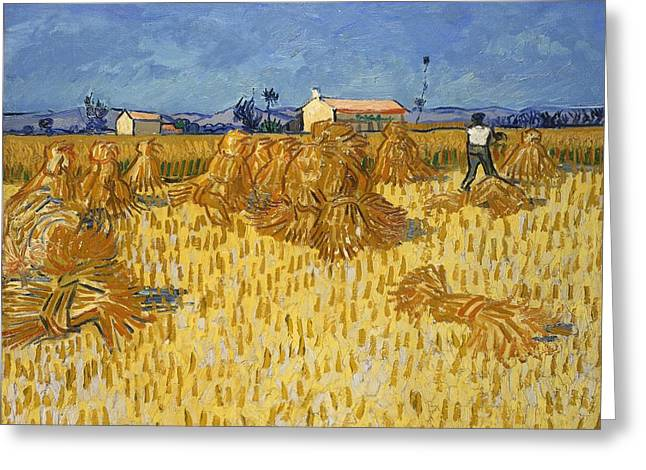 Corn Harvest In Provence Greeting Card by Vincent van Gogh