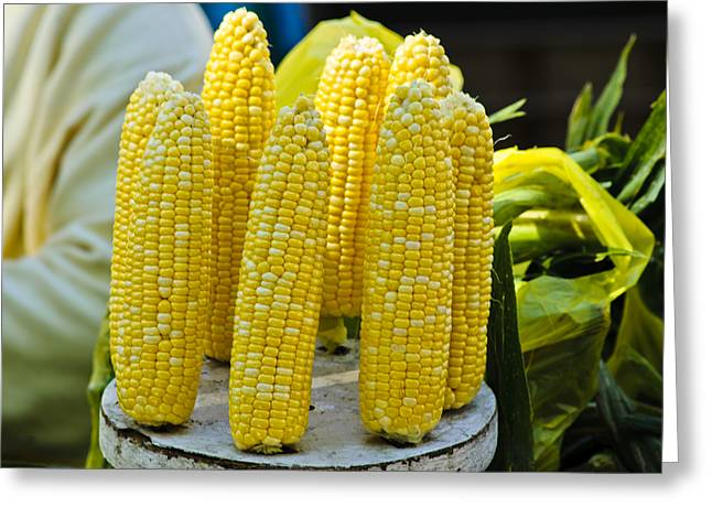 Corn On The Cob Greeting Cards - Corn on Display Greeting Card by Christi Kraft