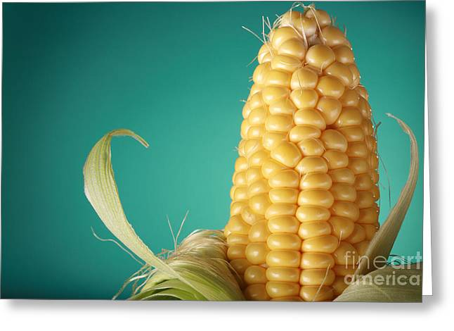 Corn On The Cob Greeting Card by Sharon Dominick