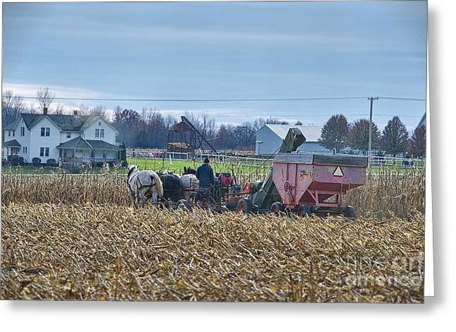 Corn Picker Nov 2013 Color Greeting Card