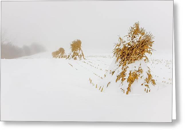 Corn Shocks In A Winter Field Greeting Card