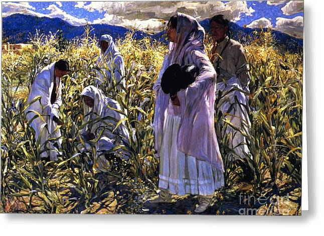 Cornfield In Taos Greeting Card by Pg Reproductions