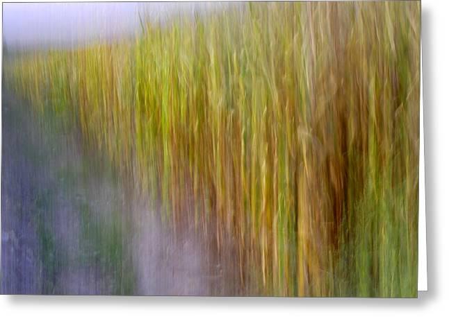 Cornfields. Memories Of Van Gogh.... Greeting Card