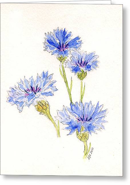 Greeting Card featuring the painting Cornflowers by Stephanie Grant