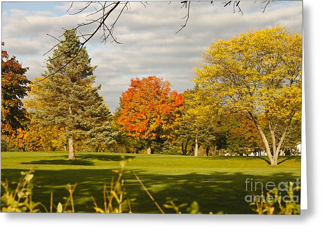 Corning Fall Foliage 5 Greeting Card