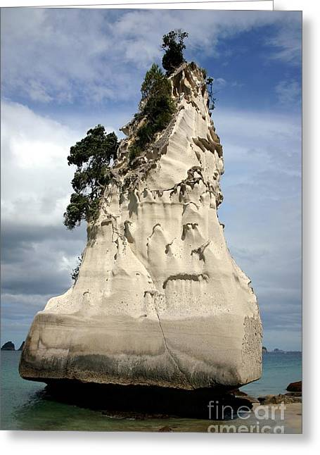 Coromandel Rock Greeting Card by Barbie Corbett-Newmin