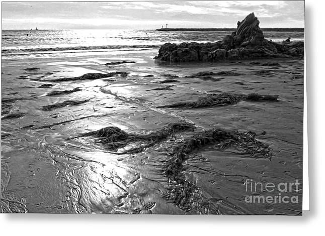 Corona Del Mar Coast - Black And Awhite Greeting Card by Gregory Dyer