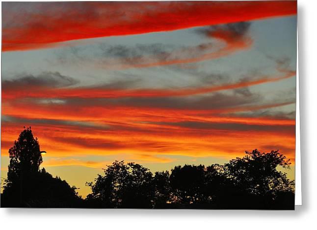 Corona Sunset Greeting Card by Jim Robinson
