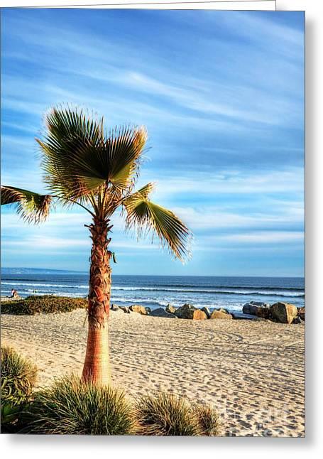 Coronado Beach Dreams Greeting Card by Mel Steinhauer